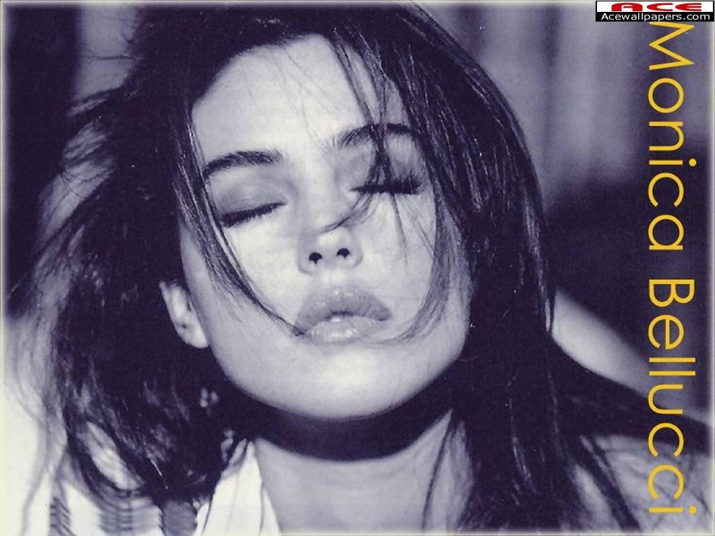 http://oseb79.free.fr/images/Stars/monica%20bellucci%2003.jpg
